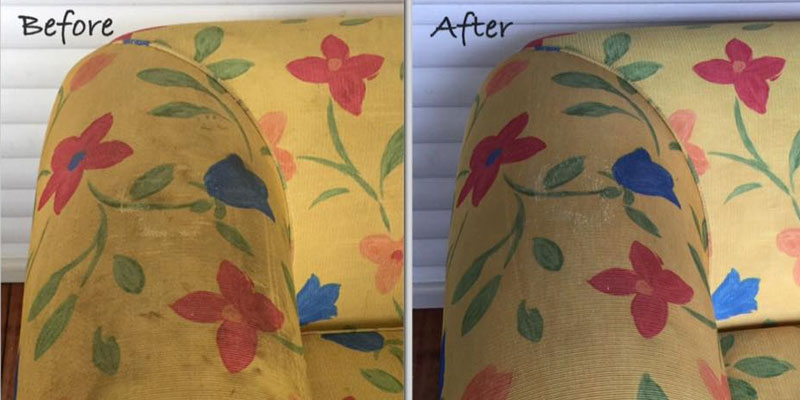 Upholstery Cleaning  Gingkin