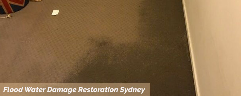 Flood Water Damage Restoration  Bondi