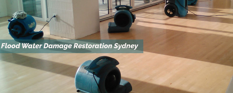 Flood Water Damage Restoration Lidcombe