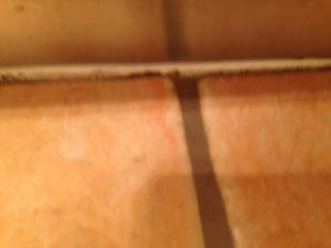 Tile Grout Cleaning  Morts Estate