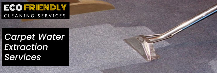 Carpet Water Extraction Service Sydney