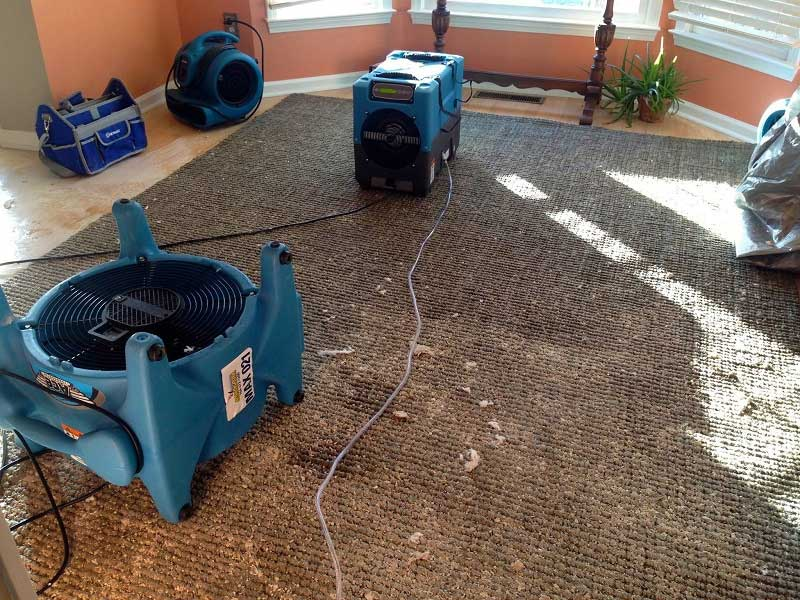 Carpet Flood and Water Damage Restoration