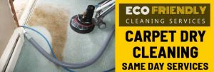 Carpet Dry Cleaning Services